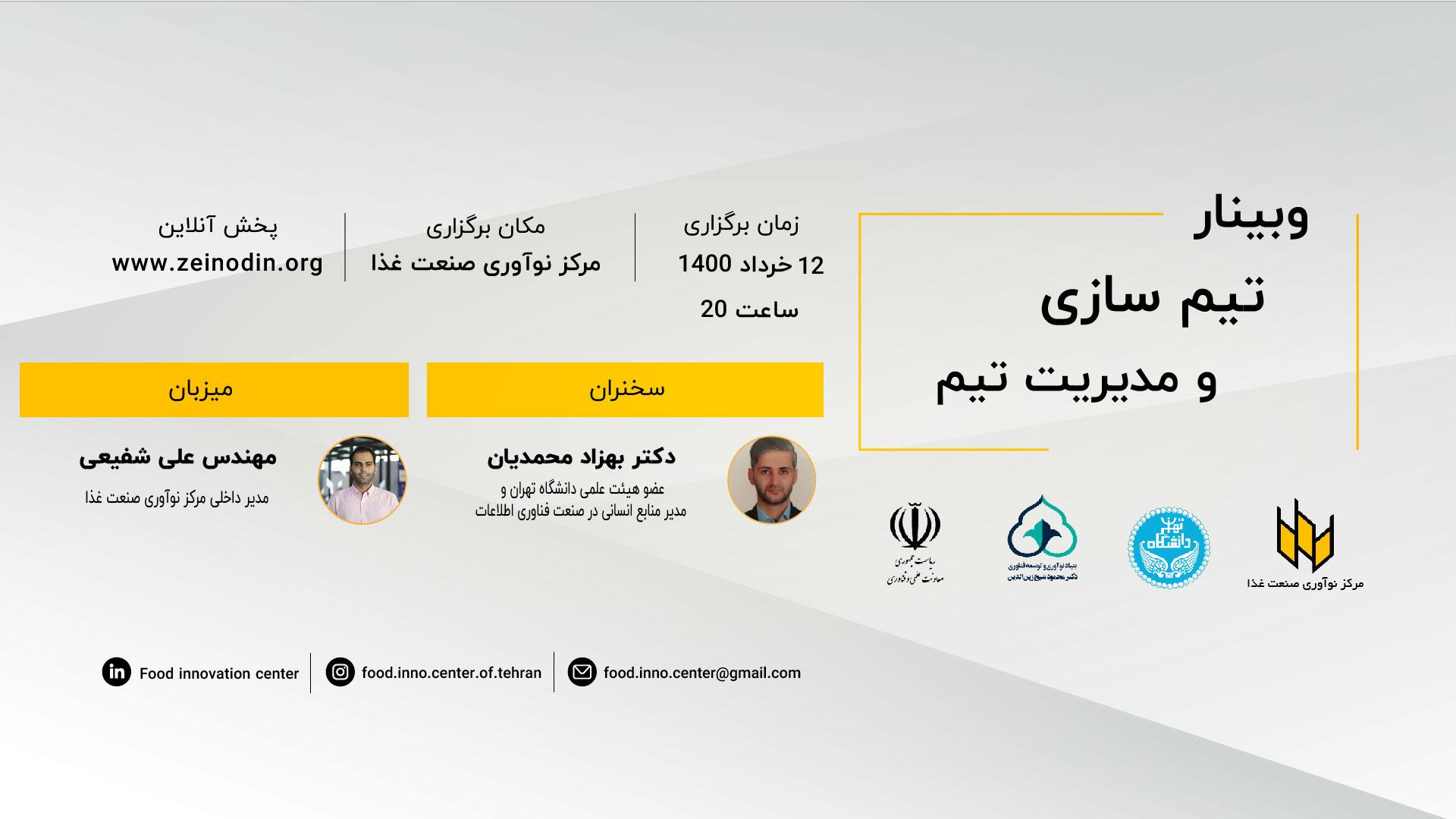 وبینار تیم سازی و مدیریت تیم