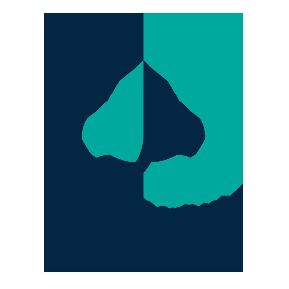 برگزاری دومین جلسه هیات امنای بنیاد دکتر محمود شیخ زین الدین
